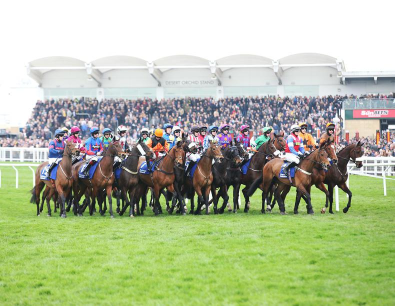 CHELTENHAM TIPS: Your free guide to the second day of the Cheltenham Festival