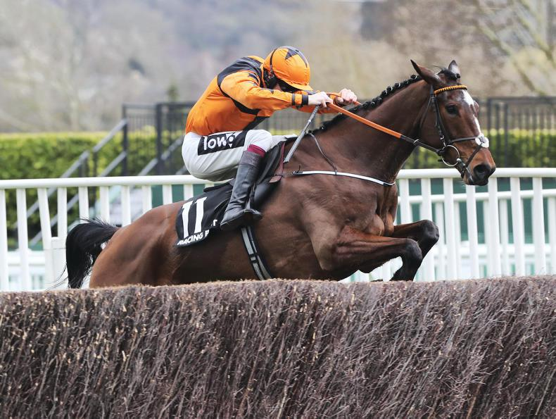 CHELTENHAM TUESDAY: Kettle too hot from the front