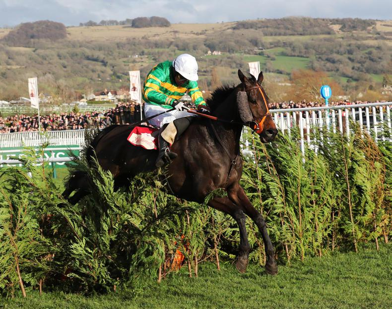 CHELTENHAM WEDNESDAY: Excellent Easys as Tiger gets stuck in the mud