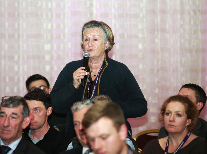 NEWS: Denis Egan returns to courtroom to refute Avril Doyle claims