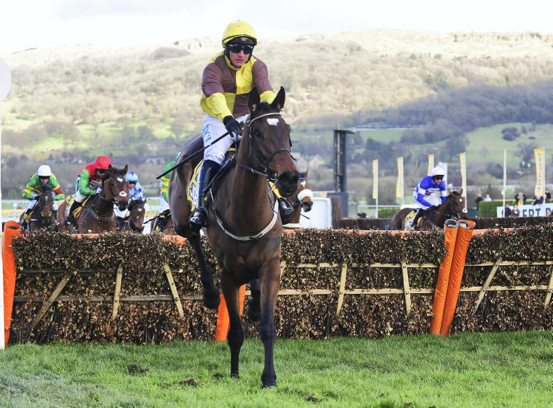 CHELTENHAM FRIDAY: Another Burning Victory for Mullins