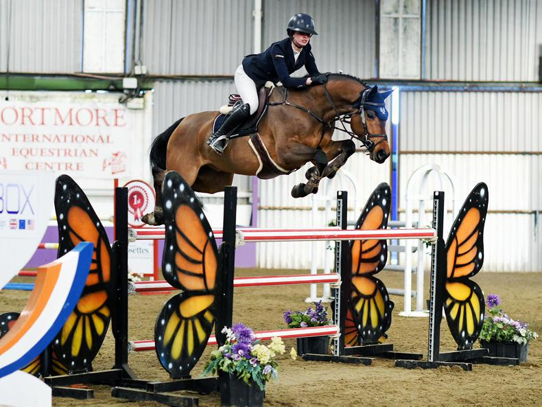 SHOW JUMPING:  Back-to-back Grand Prix wins for Fitzpatrick