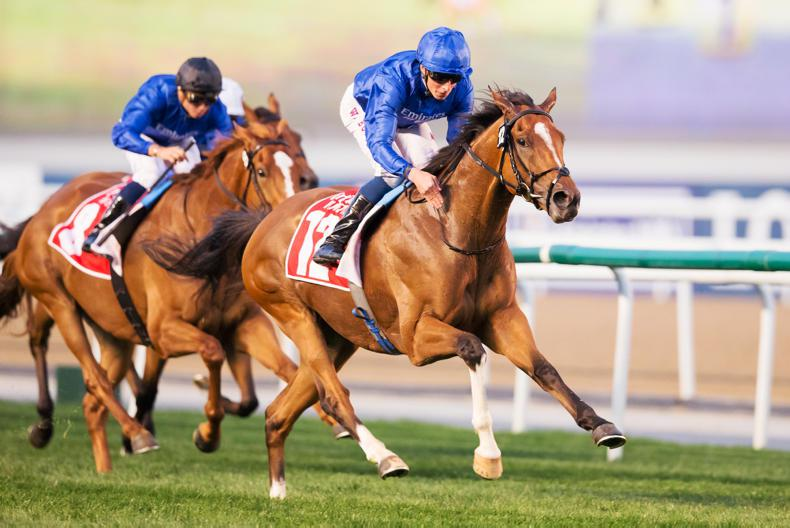 UAE: Barney Roy is back to his very best