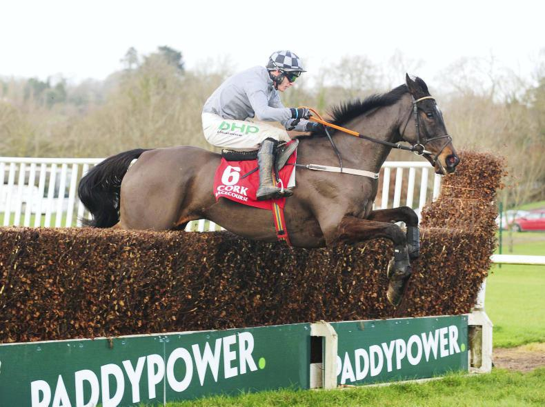 Castlegrace Paddy returns to form for Webster Cup success