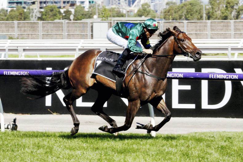 AUSTALIA/NEW ZEALAND: Eccles survives scare in Oaks