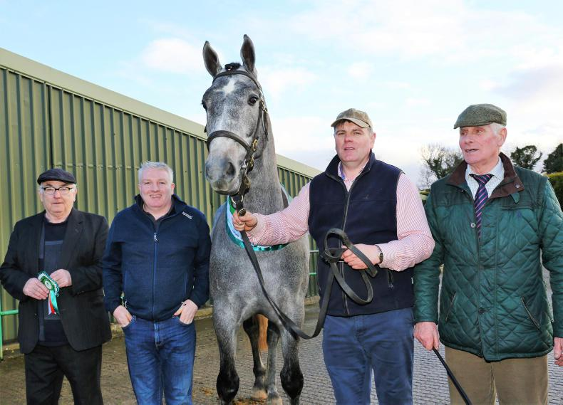 PONY TALES:  New plans for longtime friends