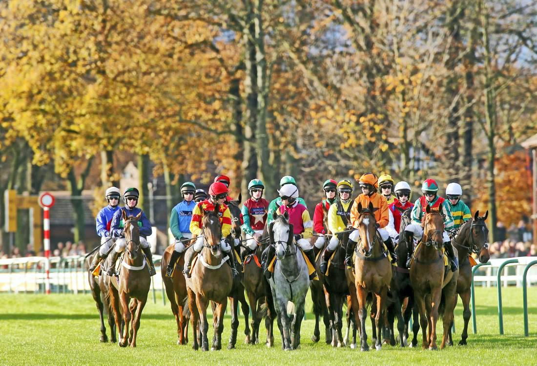 South African influence in hurdle winner