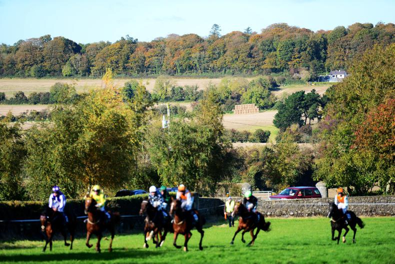 NEWS: This weekend's point-to-point fixtures have been cancelled
