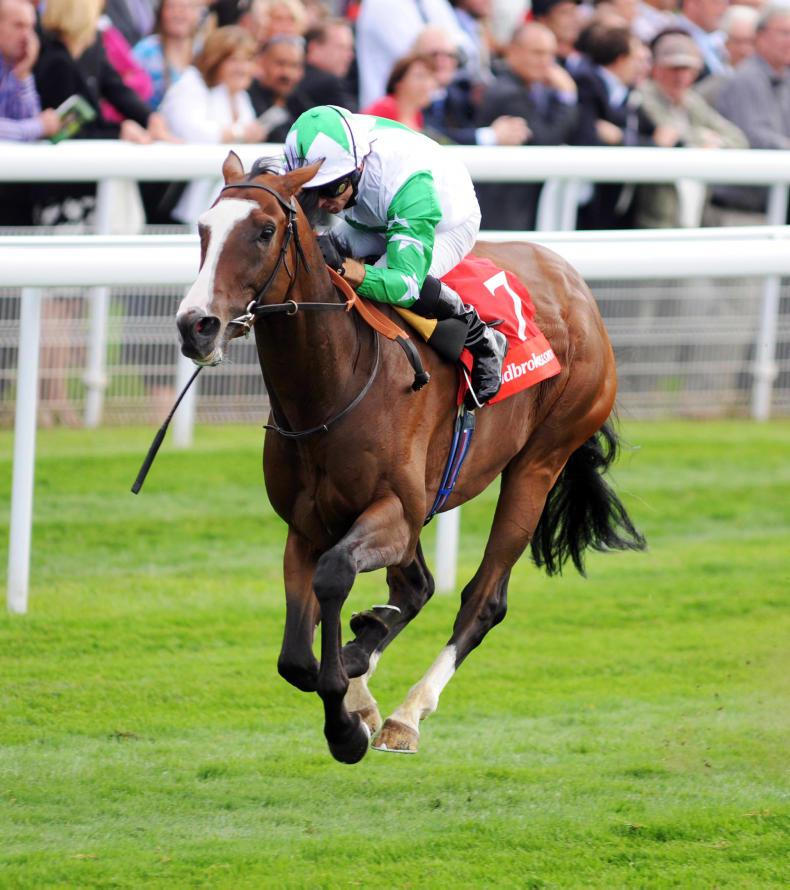 SIRE REVIEW: Monitor Closely - Standing at Longford House Stud