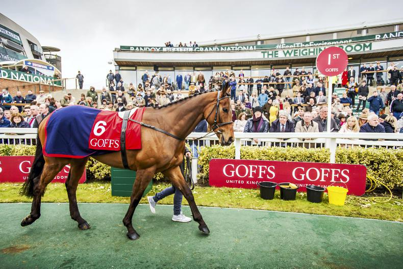 Goffs clarify status of upcoming auctions