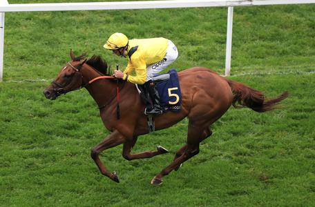 Tom Marquand strikes Group One gold with Addeybb