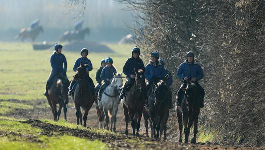 Racing Welfare braced for increased demand on services