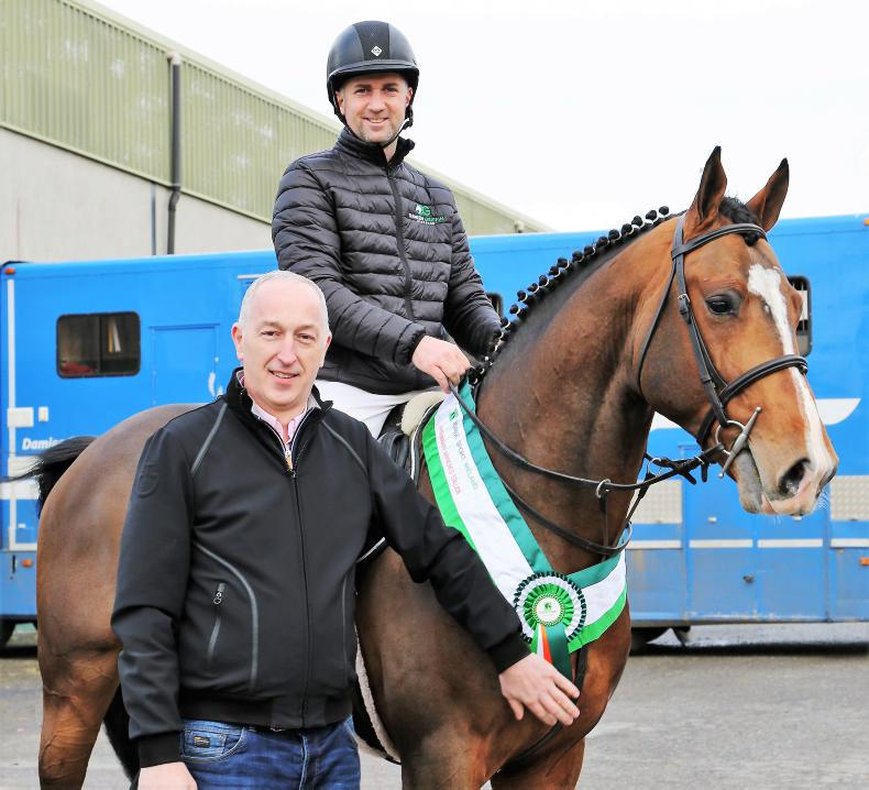 NEWS: Denis Lynch buys Lithium V.S with Ennisnag Stud