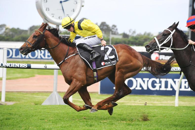 AUSTRALIA: Addeybb rules for mighty Marquand