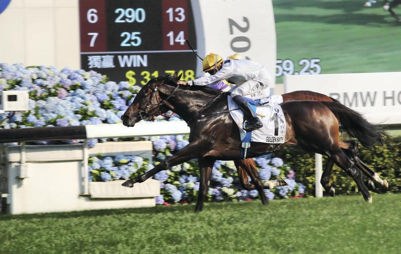 BREEDING INSIGHTS: Golden Sixty completes classic cleansweep