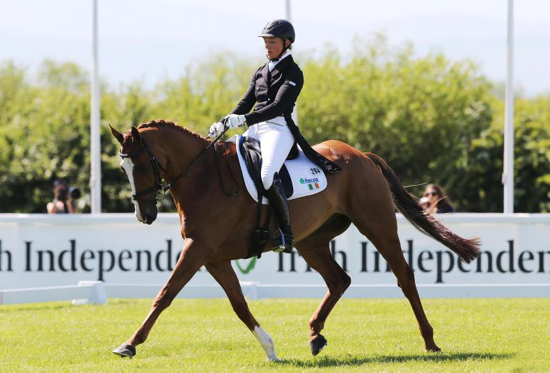 NEWS:  Eventing blow as Ballindenisk and Tattersalls cancelled
