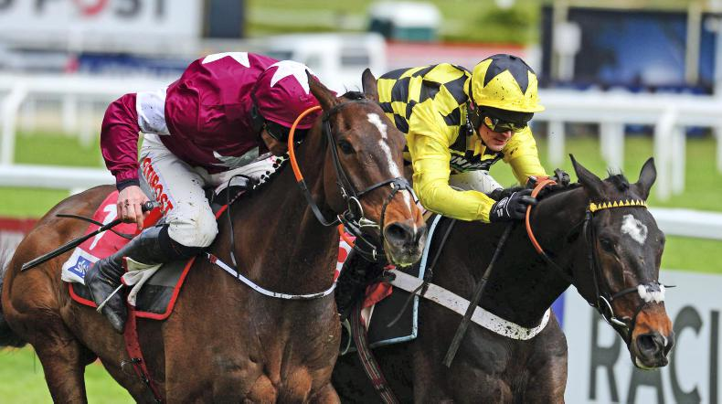 BRITISH NH SEASON: Dearth of quality in two-mile hurdle division