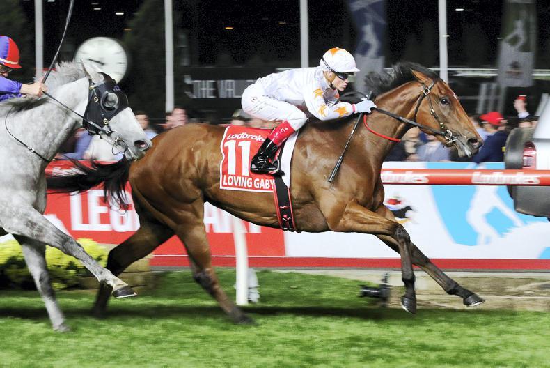 <h1>World Horse Racing News from The Irish Field </h1>