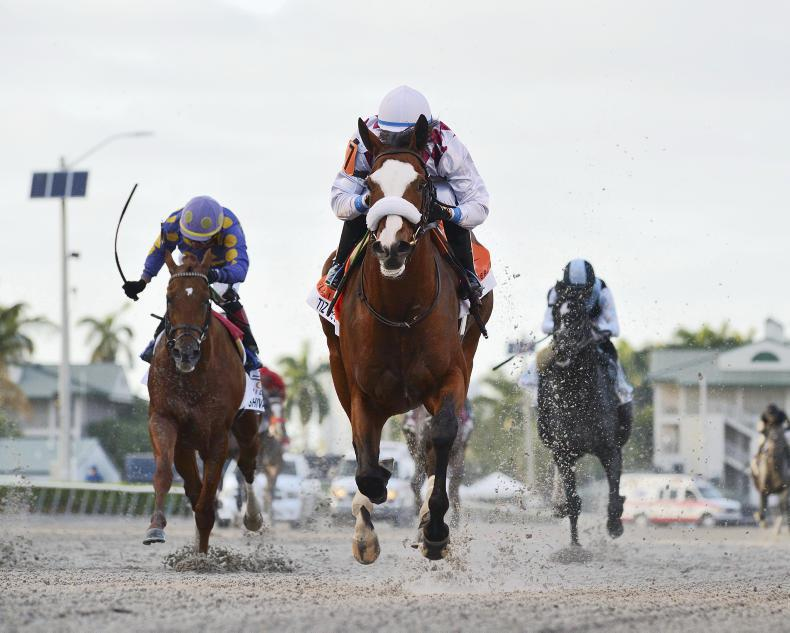 AMERICA:  Tiz The Law dominates Derby