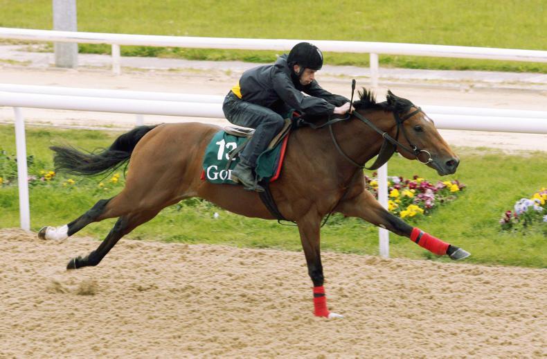 NICK NUGENT: Breeze-up horses need breeze-up sales