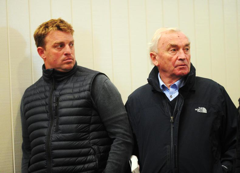 <h1>Irish Bloodstock News from The Irish Field</h1>