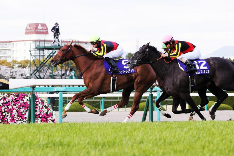JAPAN: No luck needed for impressive Lilac