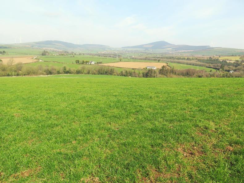 GRASSLAND MANAGEMENT 2020: Reseeding your paddocks