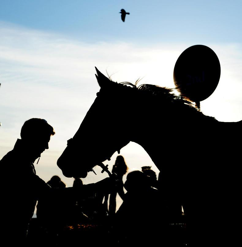 THE WEEK THAT WAS: Darker days for trainers