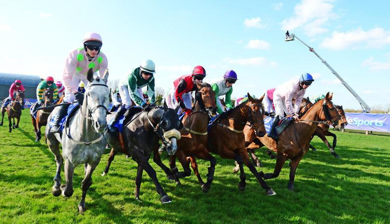 Can you pick the winner of the virtual Irish Grand National?