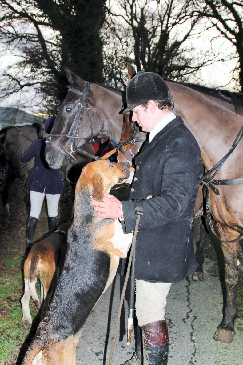 PONY TALES: One man and his hound
