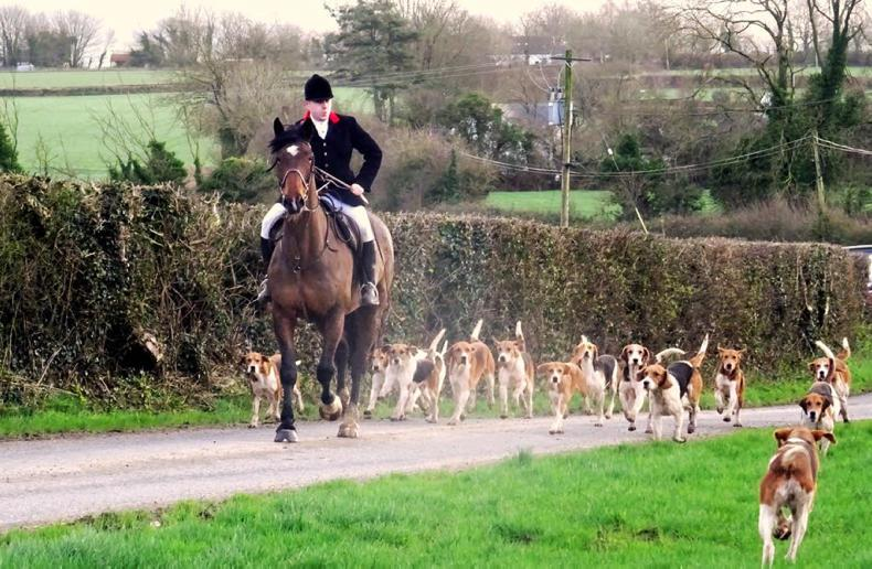 PONY TALES: Galtee Foxhounds raise €2,600 for air ambulance
