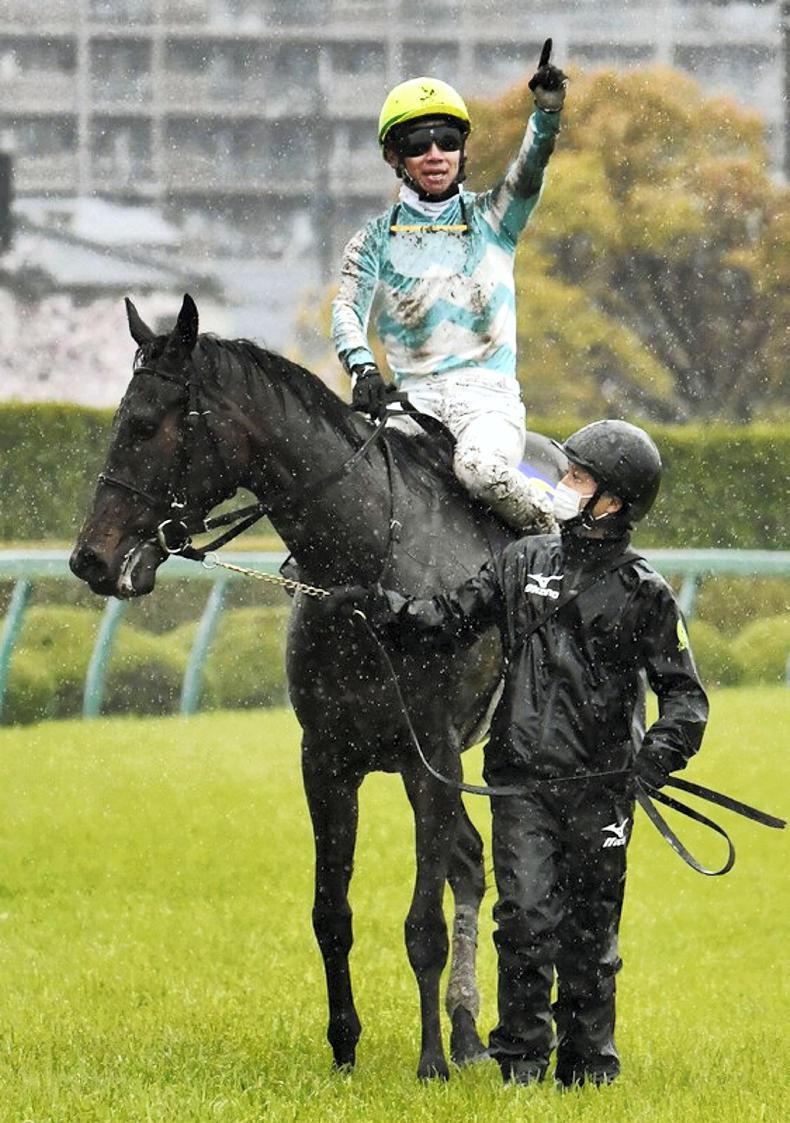 BREEDING INSIGHTS: Daring Tact's classic boost for Epiphaneia