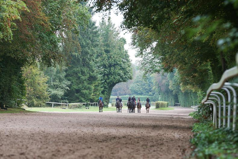 French racing primed for May 11th return