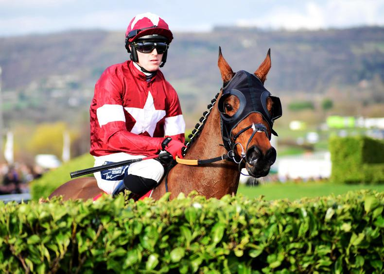 What route will Tiger Roll take next season?