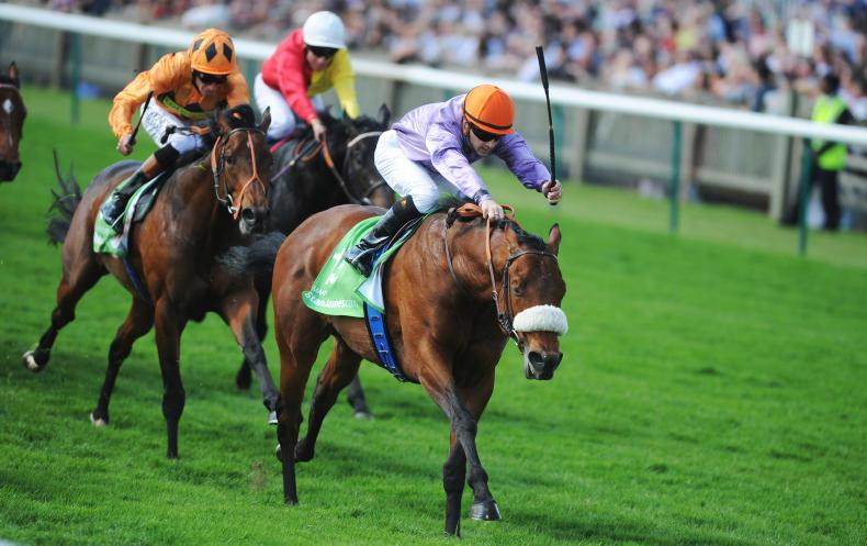 REMEMBER  WHEN: Guineas glory for classy colts
