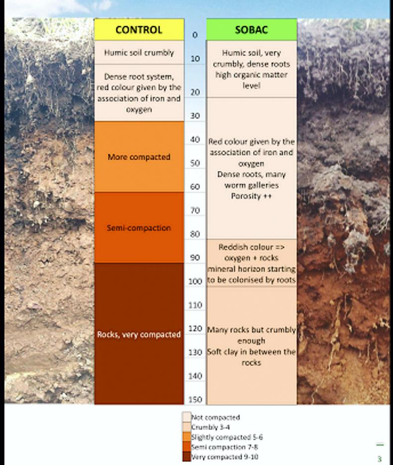 SPRING CLEANING: Healthy soil, healthy animal - ideal time to spread bacteriosol
