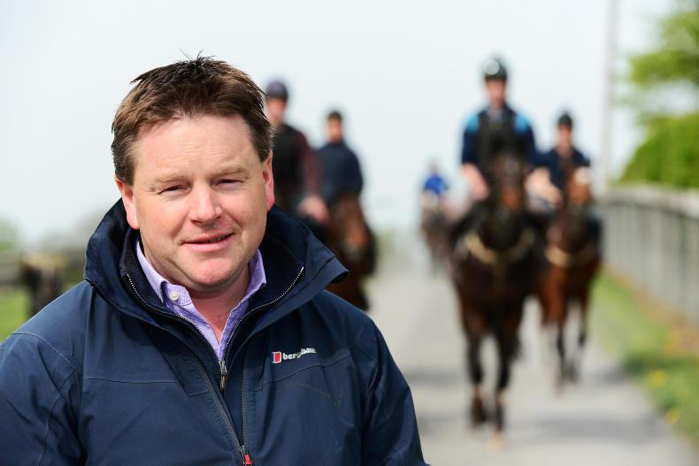 TALKING TRAINER: Paddy Twomey
