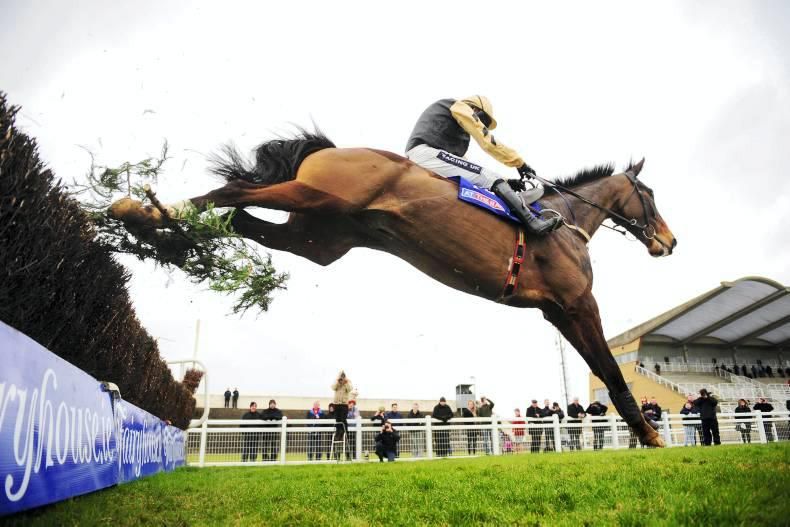 TOTE IRELAND: On His Own can lead the way