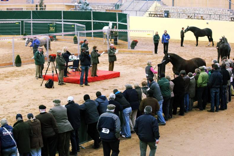Stallion owners to boycott inspections in DNA row
