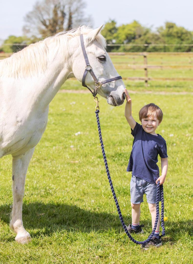 PONY TALES:  David (4) has it all in-hand!