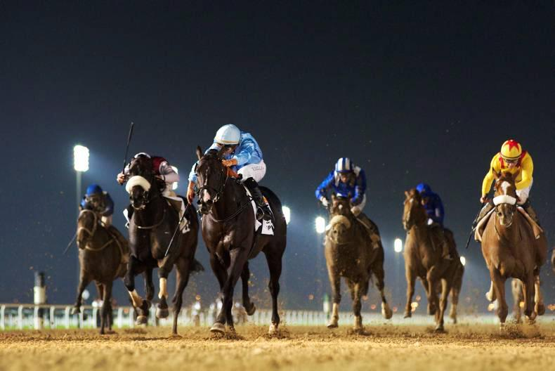 DUBAI:  Franky finds winning form