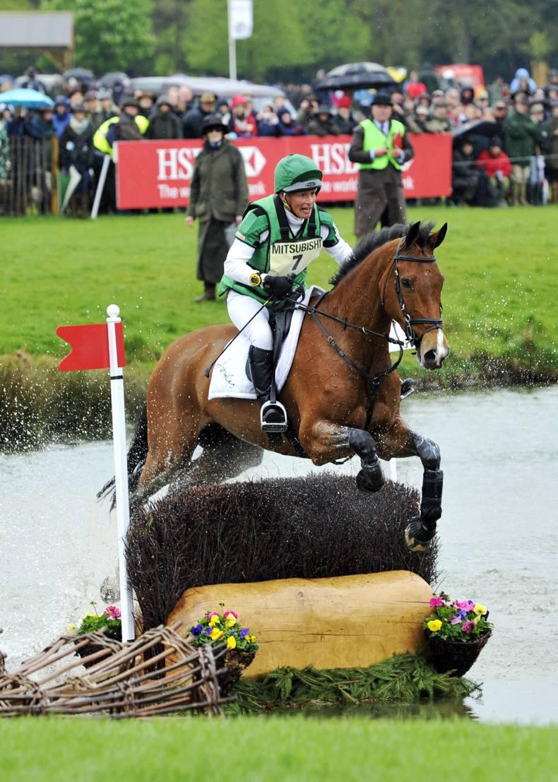 Event horse breeding: what do the numbers tell us?