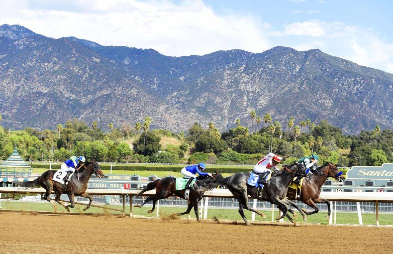 Santa Anita cleared to resume racing on Friday