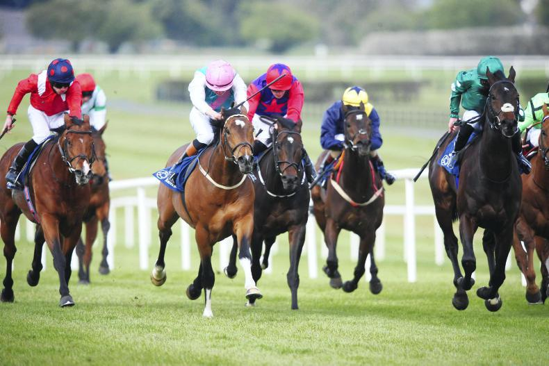 New Irish racing fixture list for June published