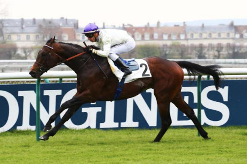 BREEDING INSIGHTS: Acclamation's popularity as great as ever