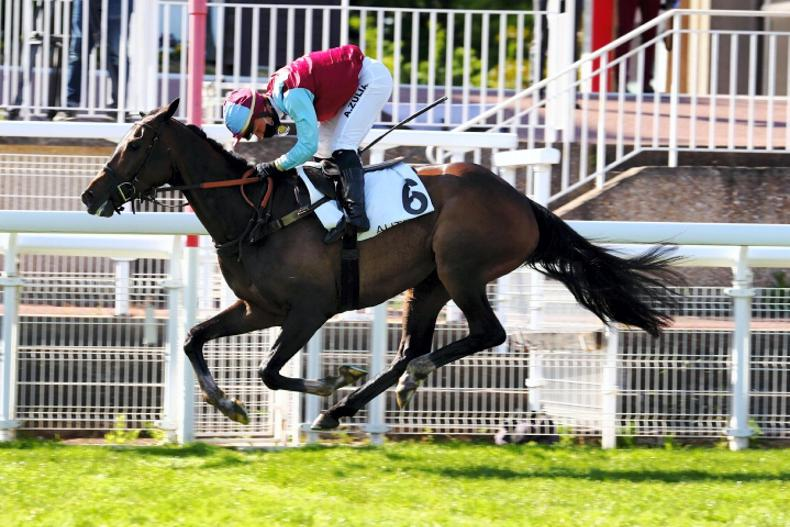 BREEDING INSIGHTS: Glenview stallions enjoy Auteuil bonanza