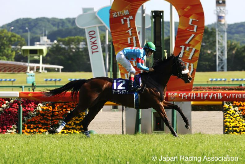 BREEDING INSIGHTS: Almond Eye joins the ranks of racing greats