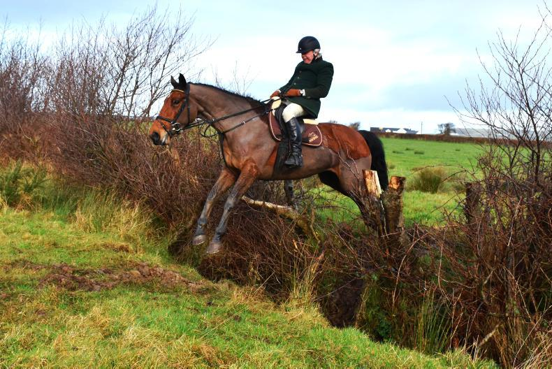 FEATURE:  Immersed in hunting, breeding and equestrian sports