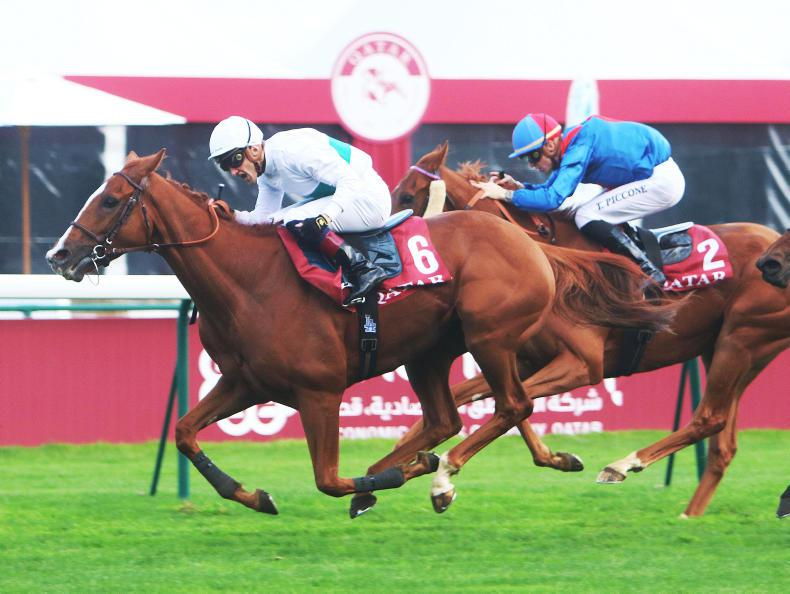 Call The Wind does enough in Deauville feature
