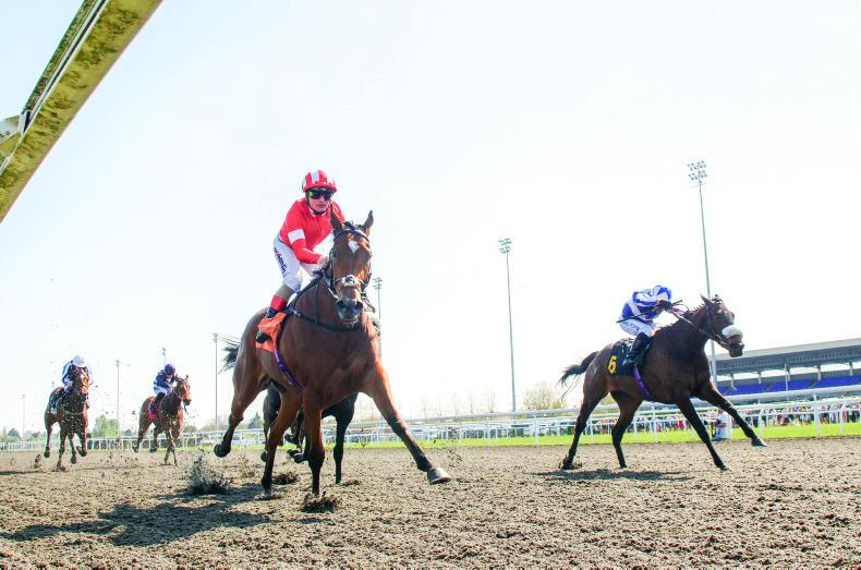 Kempton attracts 454 entries for Tuesday card